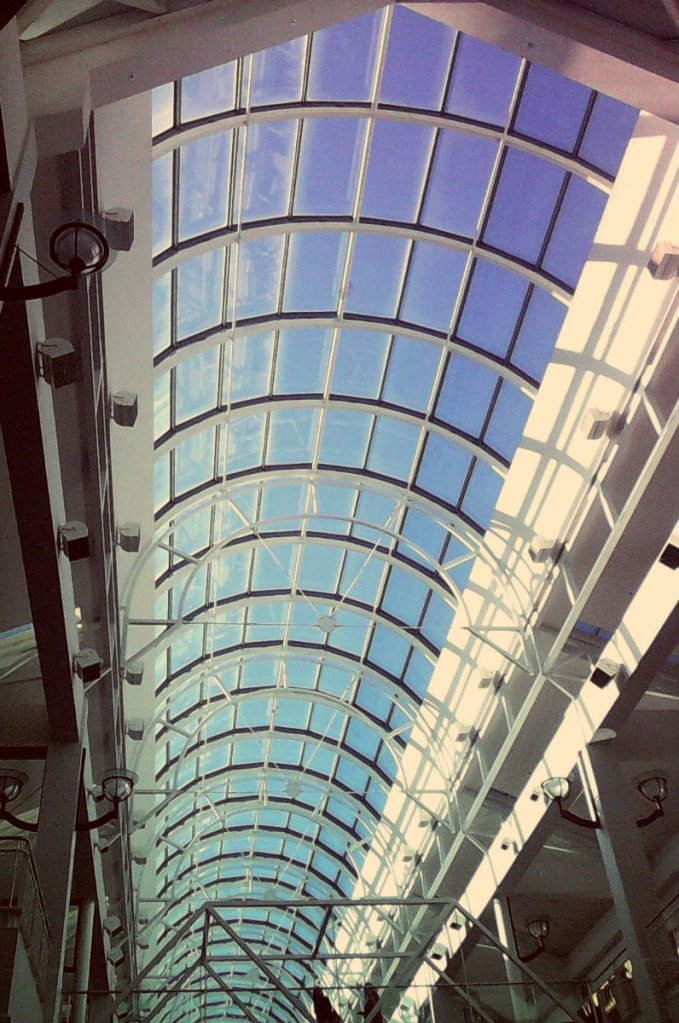 Arden Mall Ceiling