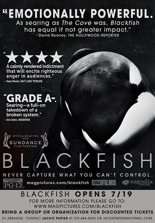 Movie Poster/photo: whaleman.org