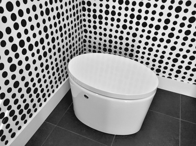 Calvin's Modern toilet